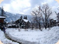 5 star hotels and resorts in kullu manali