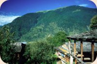 best hotels and cottagges in kullu manali india