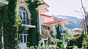 lawn-front, best resorts in manali