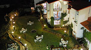 lawn-night-overview, best resorts in manali