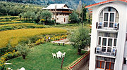 lawn1, best resorts in manali