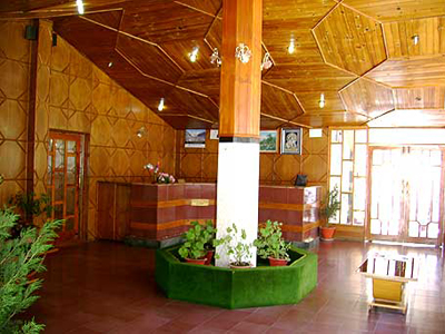 reception, best hotels and resorts in manali